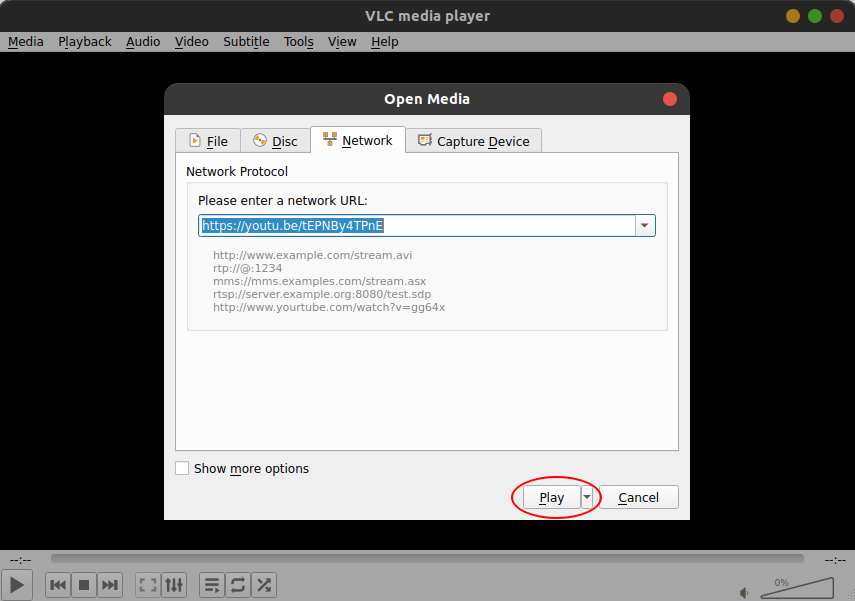 how to download a publicly available youtube video